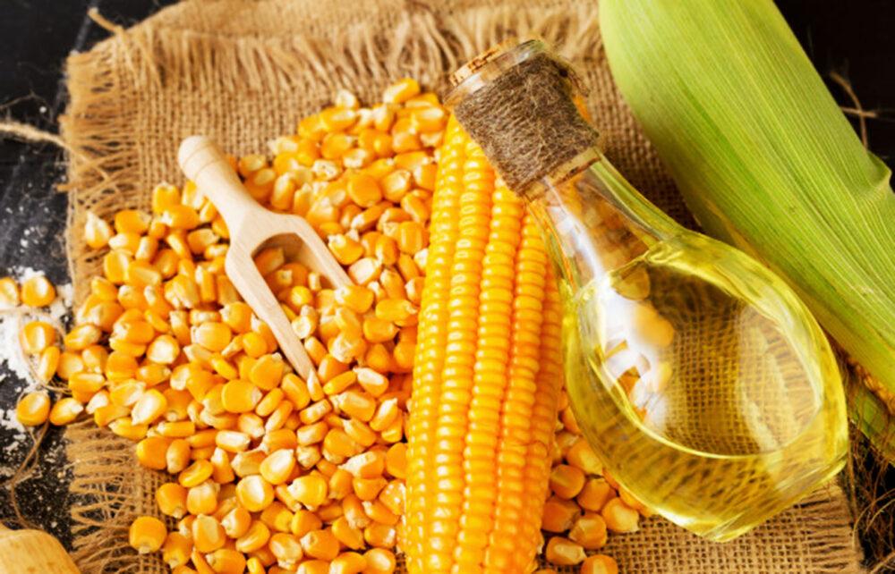 ¿Es saludable el aceite de maíz? Nutrición, beneficios y desventajas