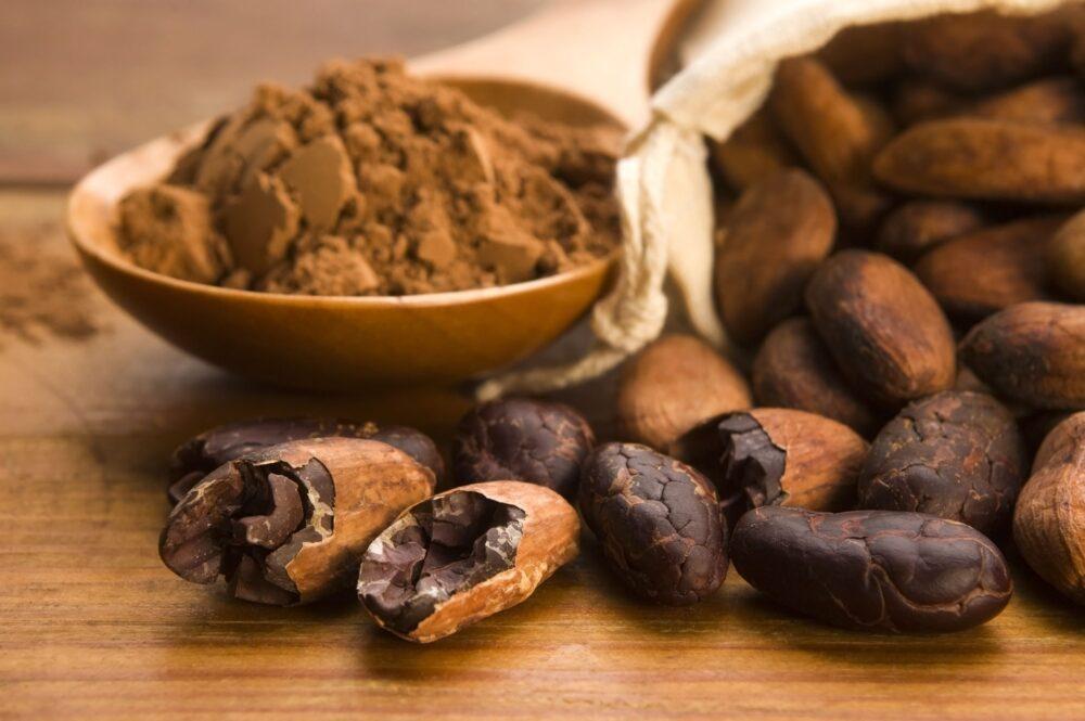 Chocolate negro (Cacao)