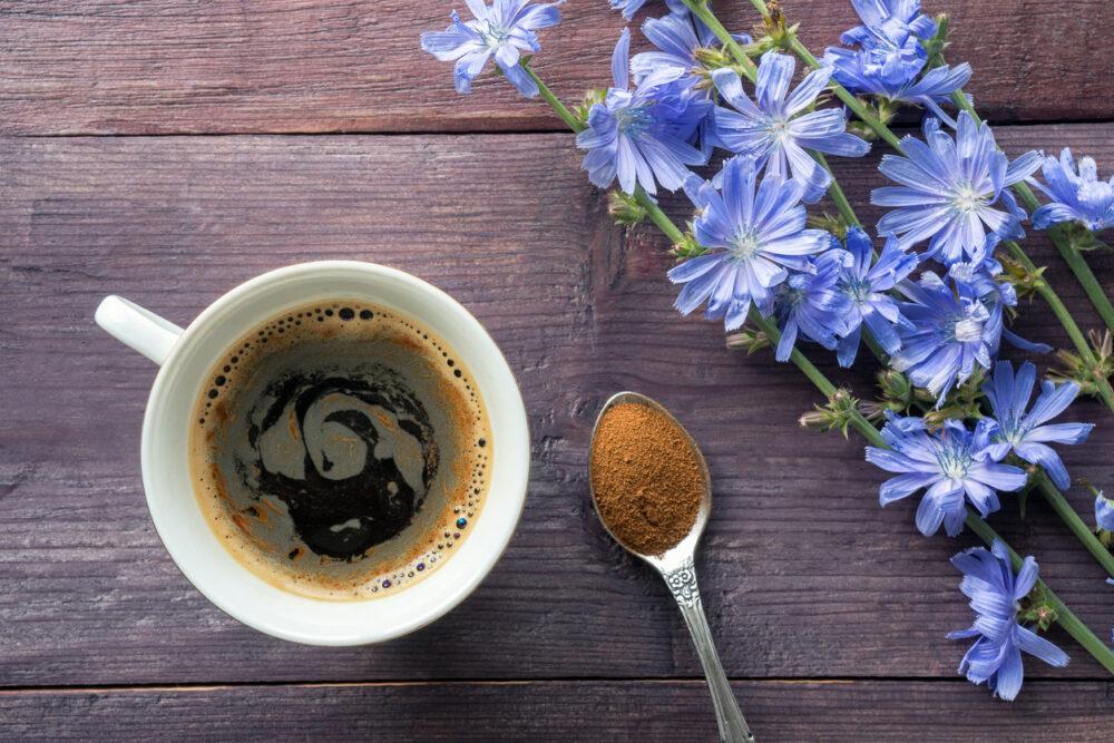 El café de achicoria es naturalmente libre de cafeína