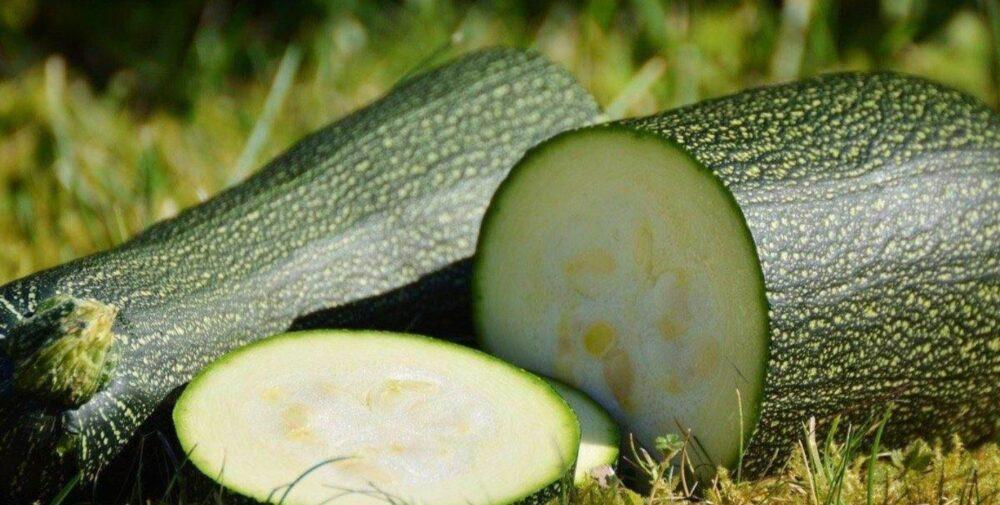 El calabacin es alto en antioxidantes