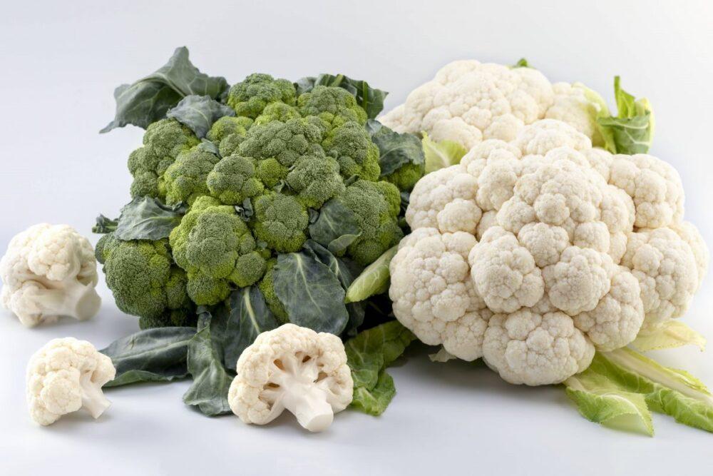 El contenido de vitamina C apoya un sistema inmunológico saludable