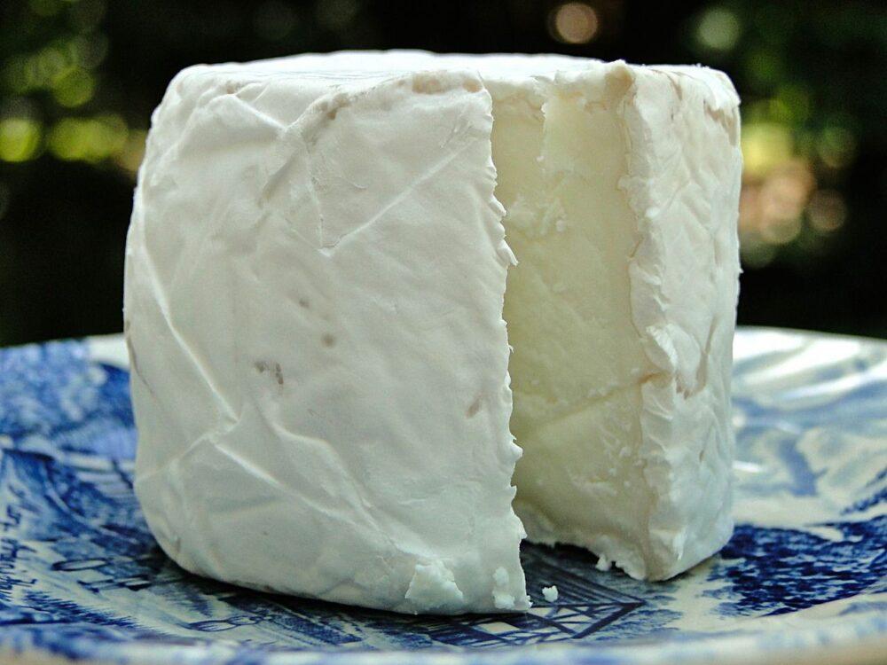 El queso de cabra pueder ser un queso mas relleno que otros quesos