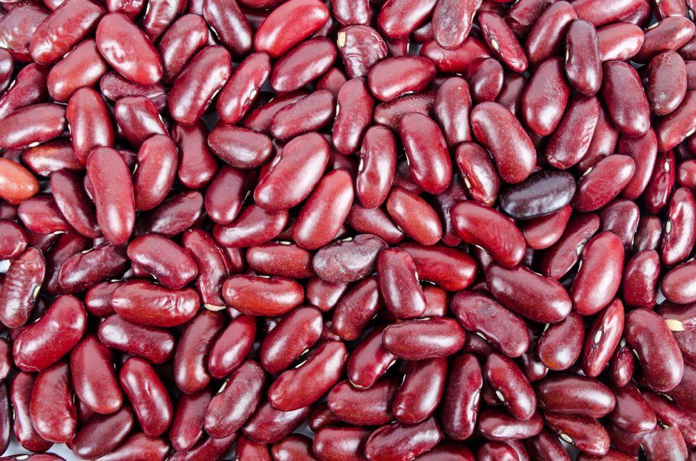 Frijoles de riñón 101: Datos sobre nutrición y beneficios para la salud