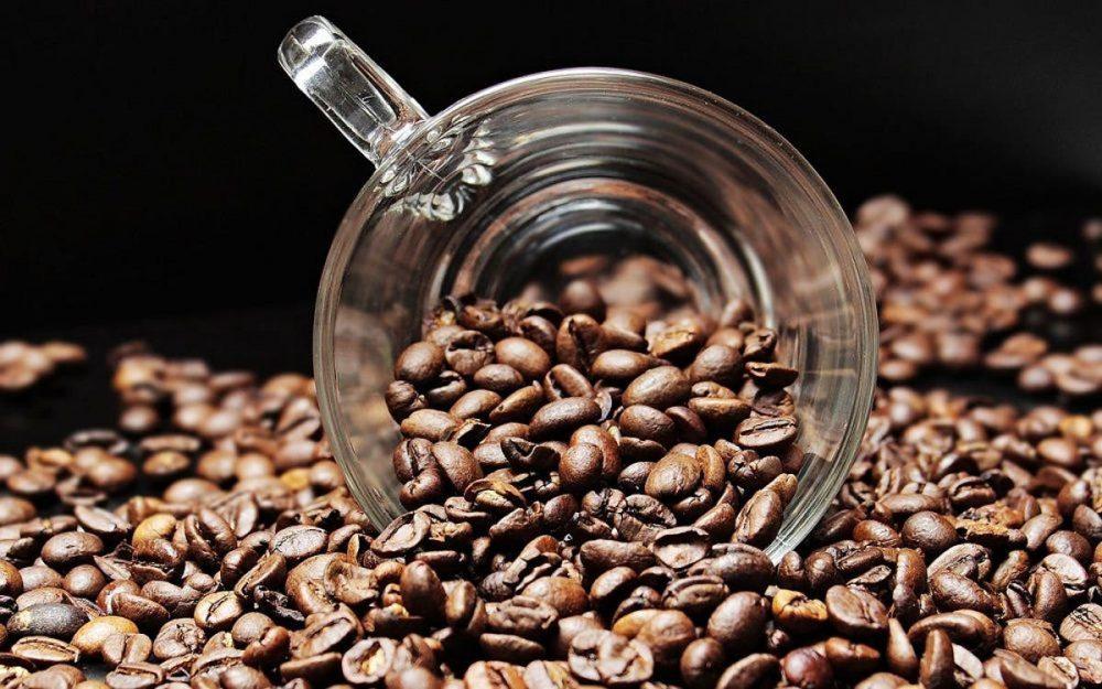 ¿Puedes comer granos de café? Todo lo que necesitas saber