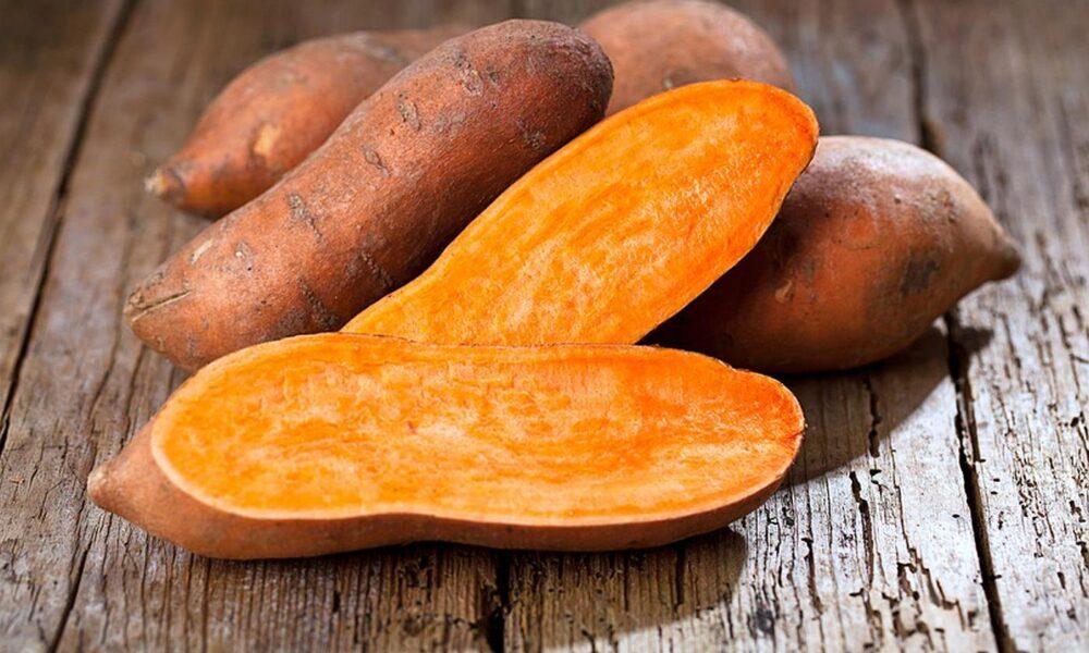 La batata contiene proteina