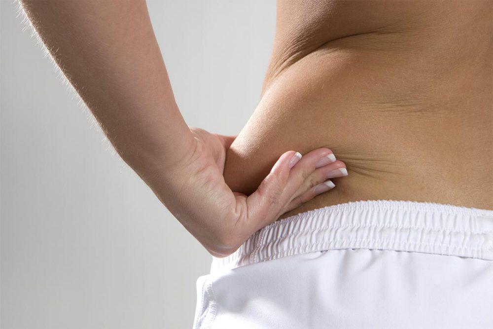 Leptina y la grasda corporal