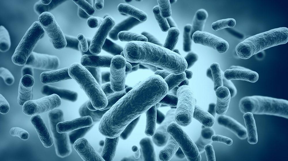 5 Posibles efectos secundarios de los probióticos
