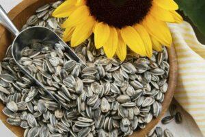 ¿Son las semillas de girasol buenas para usted? Nutrición, beneficios y más