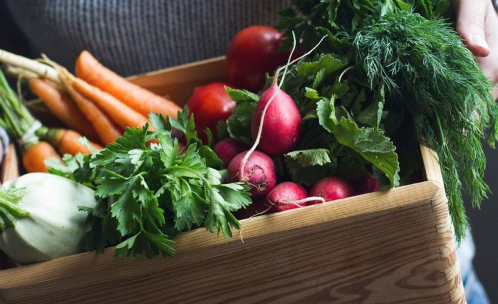Las 10 verduras de invierno más saludables