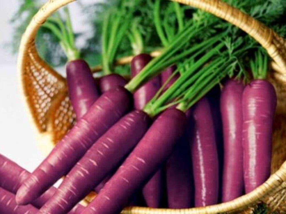 ¿Las zanahorias moradas son más saludables? Nutrición, beneficios y usos