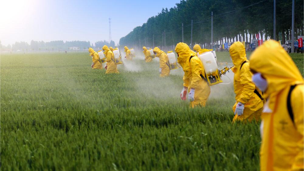 ¿Cómo se regulan los niveles de plaguicidas en los alimentos?