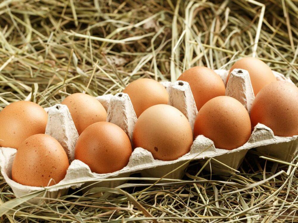 ¿Cuál es la forma más saludable de cocinar y comer huevos?
