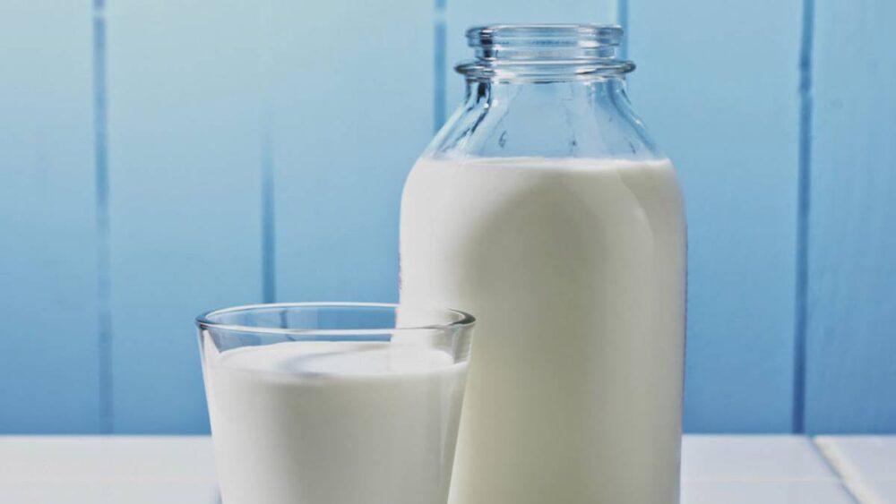 ¿Es la leche entera mejor que la leche desnatada y baja en grasa?