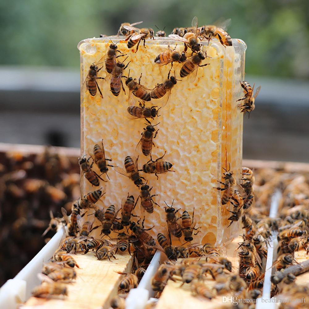 ¿Puedes comer panal de miel? Beneficios, usos y peligros
