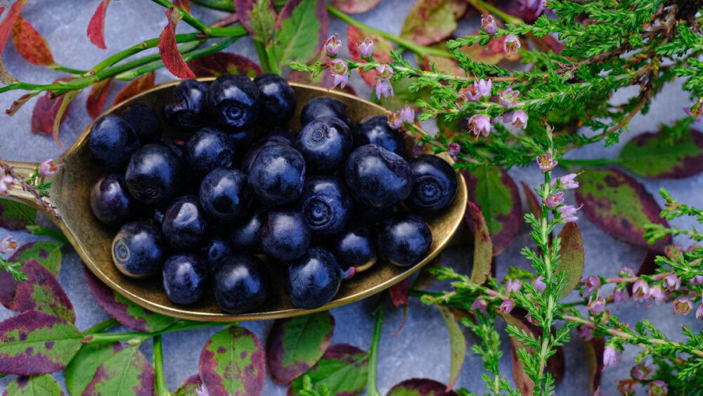 ¿Qué es la Quercetina? Beneficios, alimentos, dosis y efectos secundarios