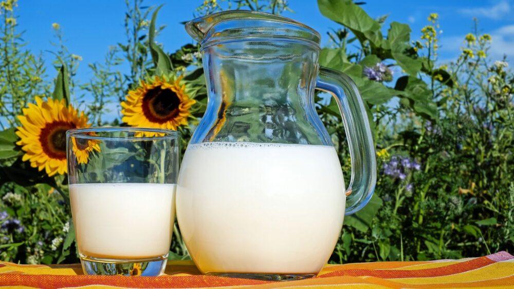 ¿Qué es la leche enriquecida? Beneficios y usos