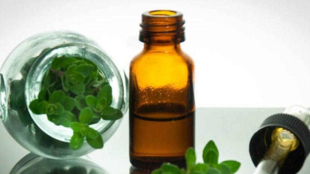 9 Beneficios y usos del aceite de orégano