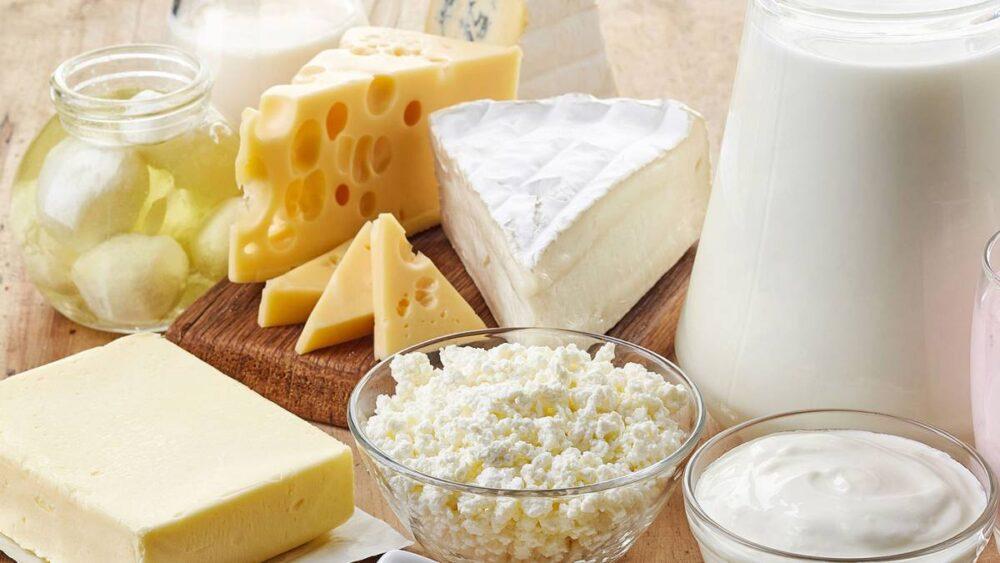 Alimentos lácteos con calcio