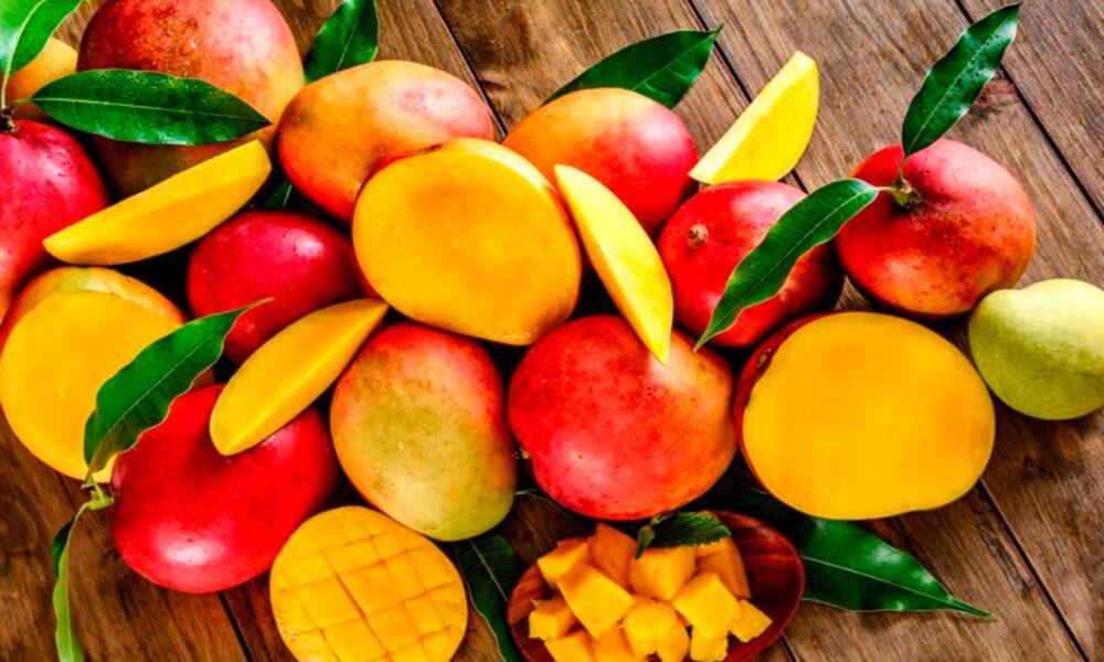 Alto en Antioxidantes