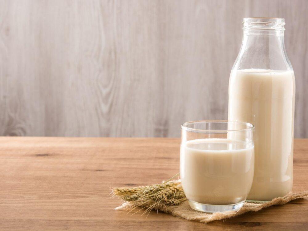 Beber leche entera puede ayudarle a controlar su peso