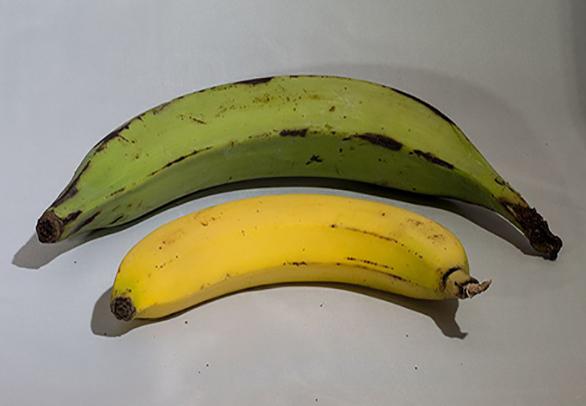 El efecto del plátano en el azúcar en la sangre depende de su madurez