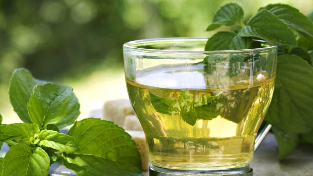 El té verde puede matar bacterias, lo que mejora la salud dental y reduce el riesgo de infección
