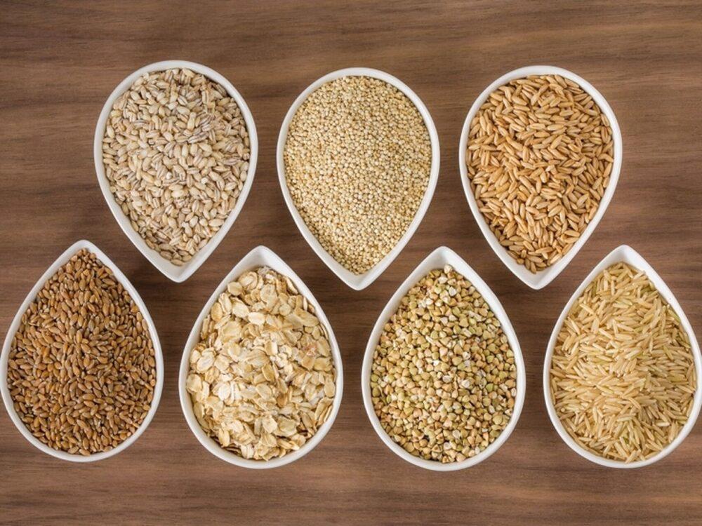 Fases 2 y 3: Alimentos a incluir