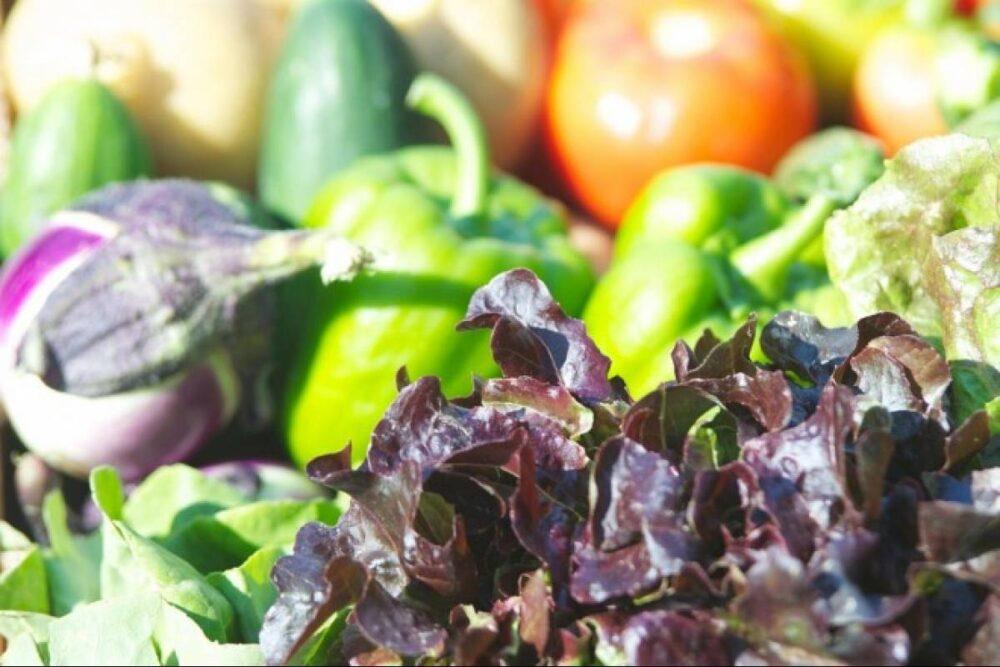 La comida chatarra orgánica sigue siendo comida chatarra