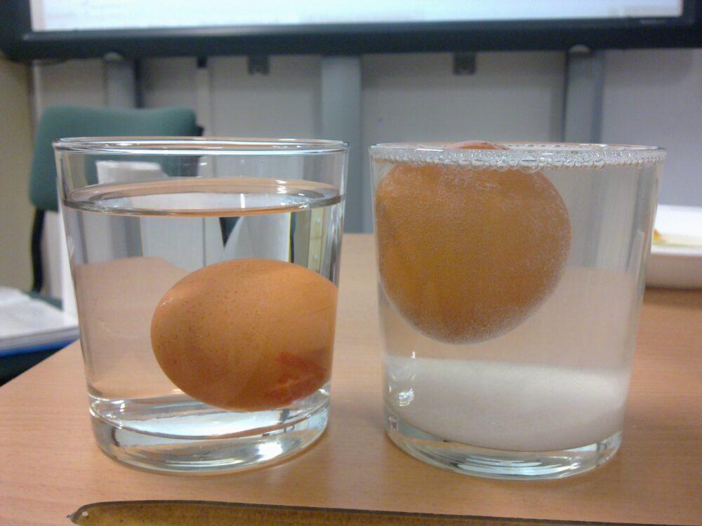 La prueba de flotación es uno de los métodos más populares para comprobar si un huevo es bueno o malo.