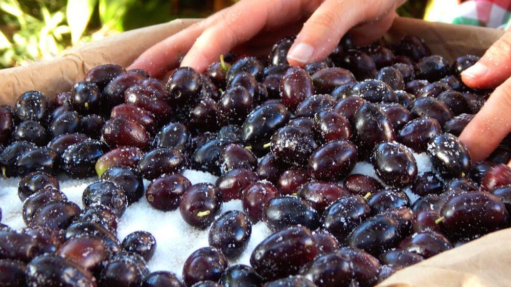 Las propiedades antioxidantes