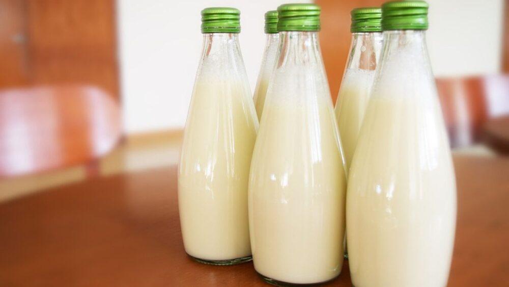 Leche de Onda: 6 razones por las que deberías probar la leche de guisantes