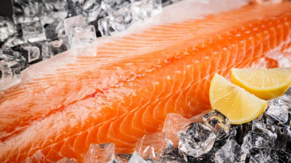 Los antibióticos en los peces de piscifactoría