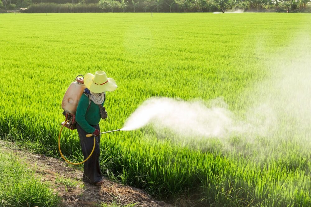 Pesticidas sintéticos