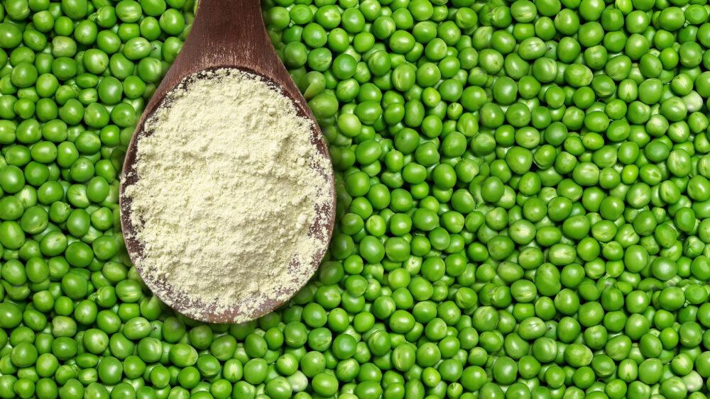 Polvo de proteína de guisante: Nutrición, beneficios y efectos secundarios