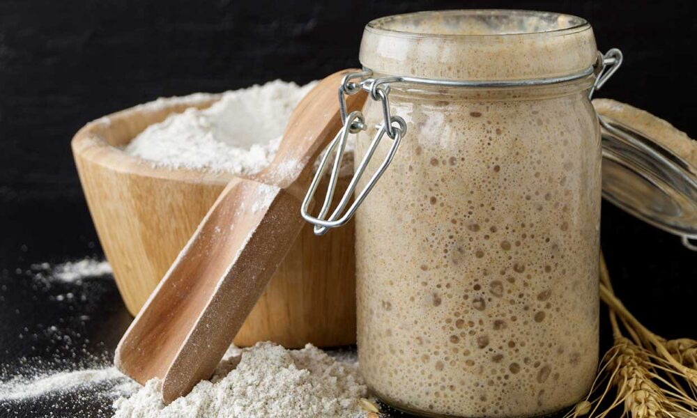 Por qué el pan de masa madre es uno de los panes más saludables