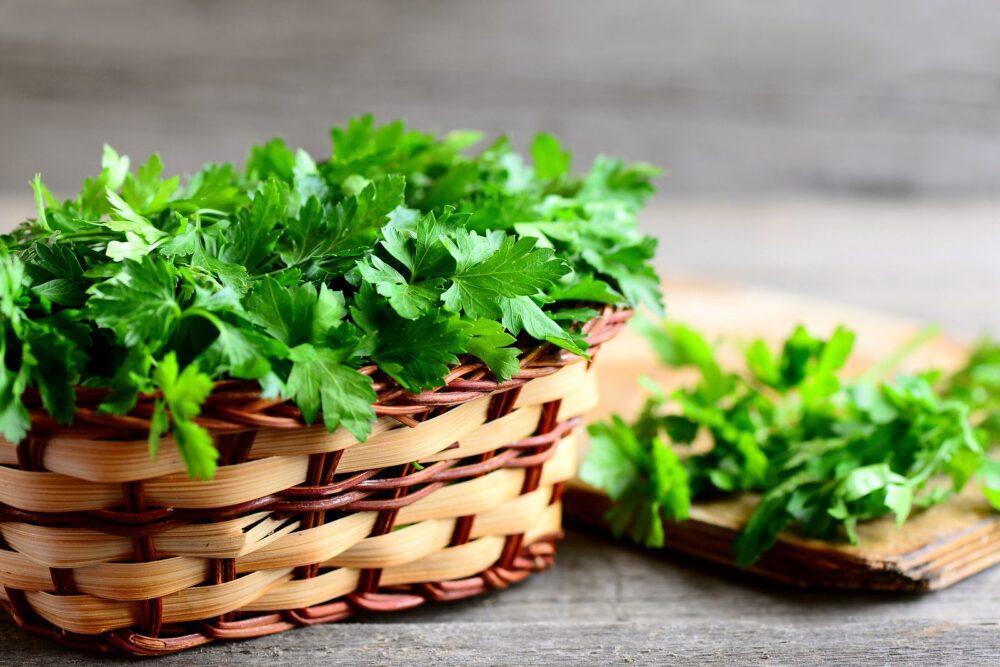 Rico en antioxidantes