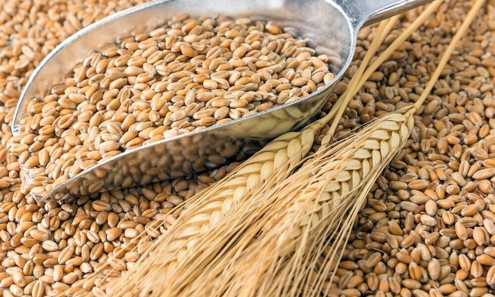 13 Alimentos que causan hinchazón (y qué comer en su lugar)