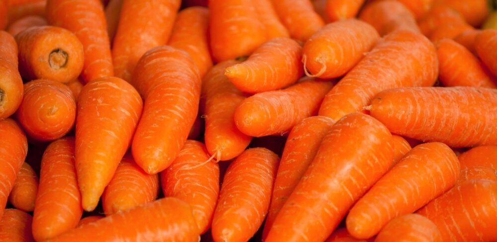 Zanahorias 101: Datos sobre nutrición y beneficios para la salud